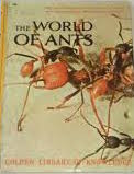 Golden Book of Knowledge_Ants