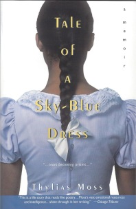 Take of a Sky-Blue Dress cover