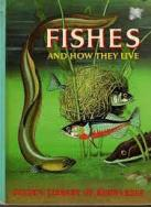 golden-book-of-knowledge_fishes
