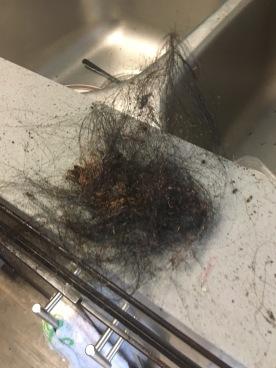 burnt hair