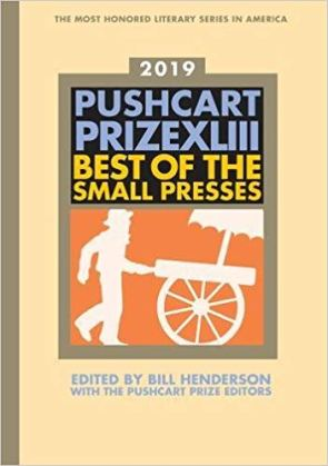 Pushcart prize 2019
