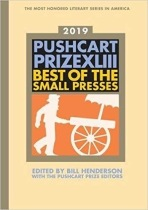 Pushcart Prize book